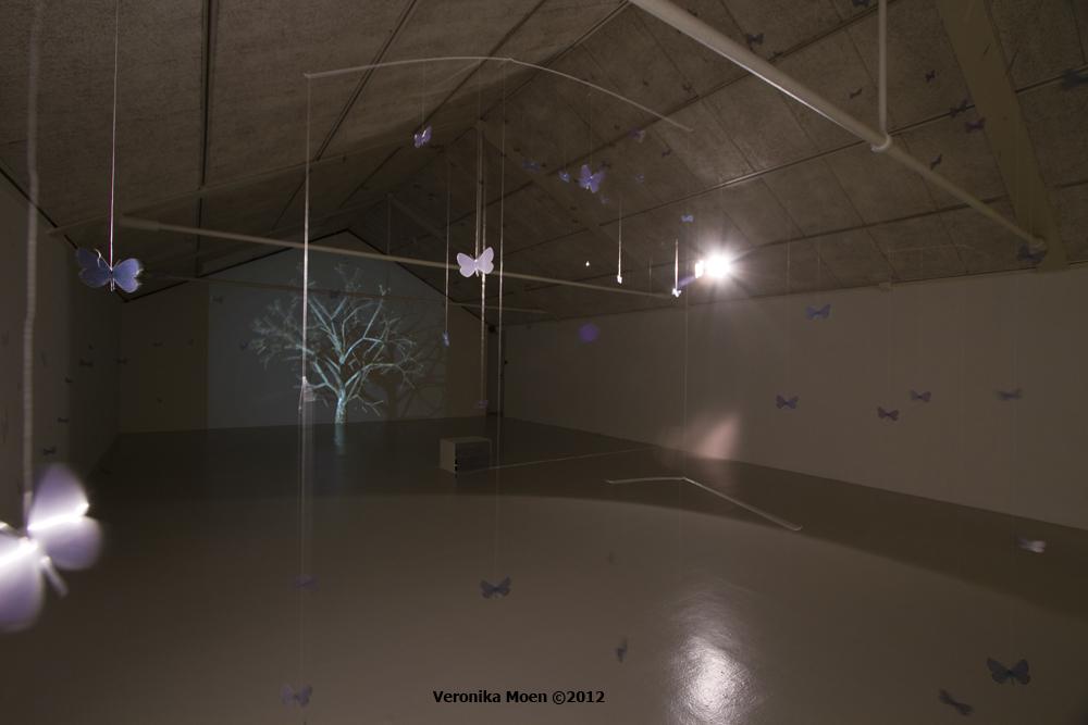 Uninvited Displacement - Ram galleri 2011