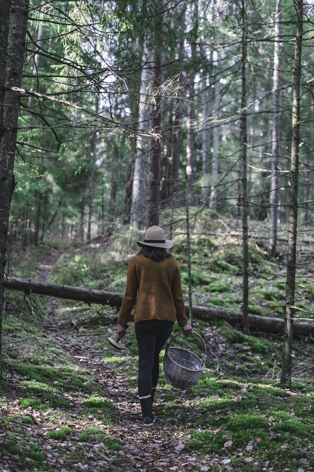 veronikamoen-ournordicadventures