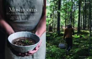 delicious. Oct 19 Mushrooms_Page_1